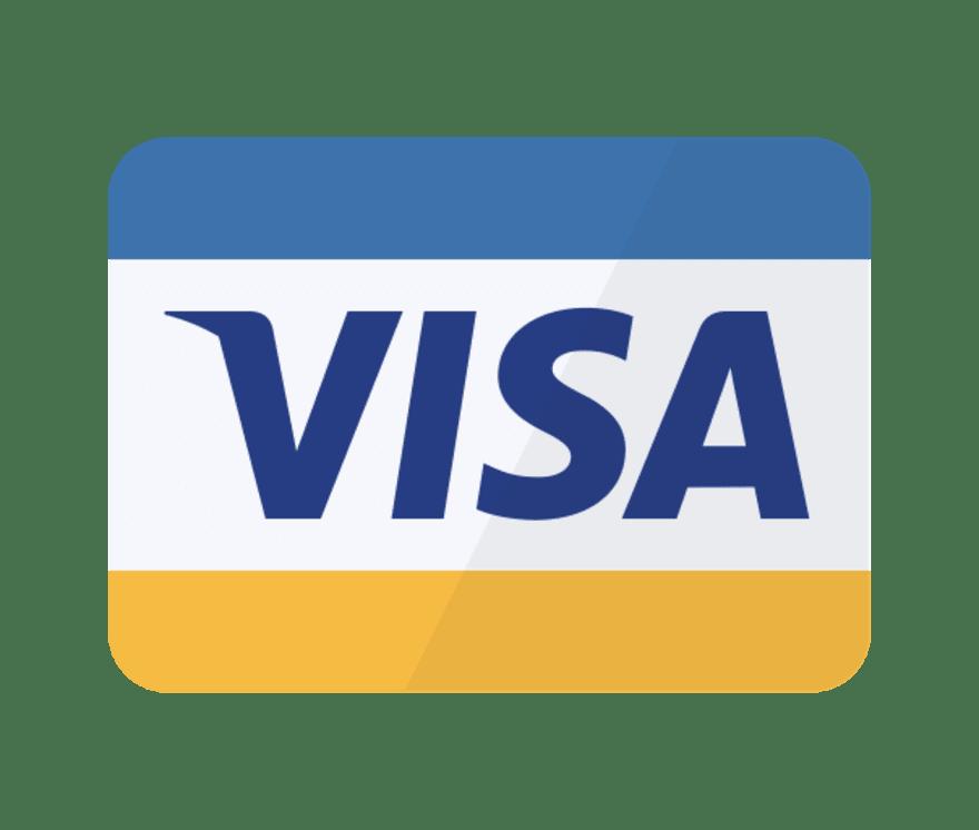 真人娱乐场 Visa