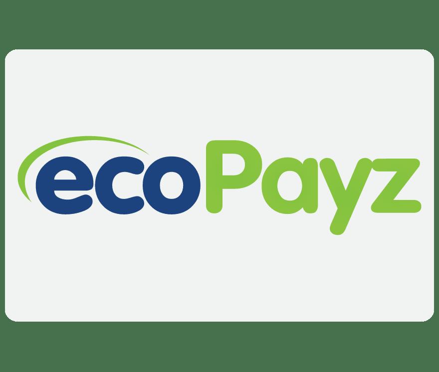 真人娱乐场 EcoPayz